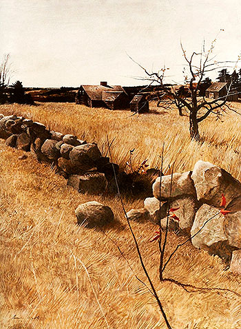 Stone Fence - Andrew Wyeth