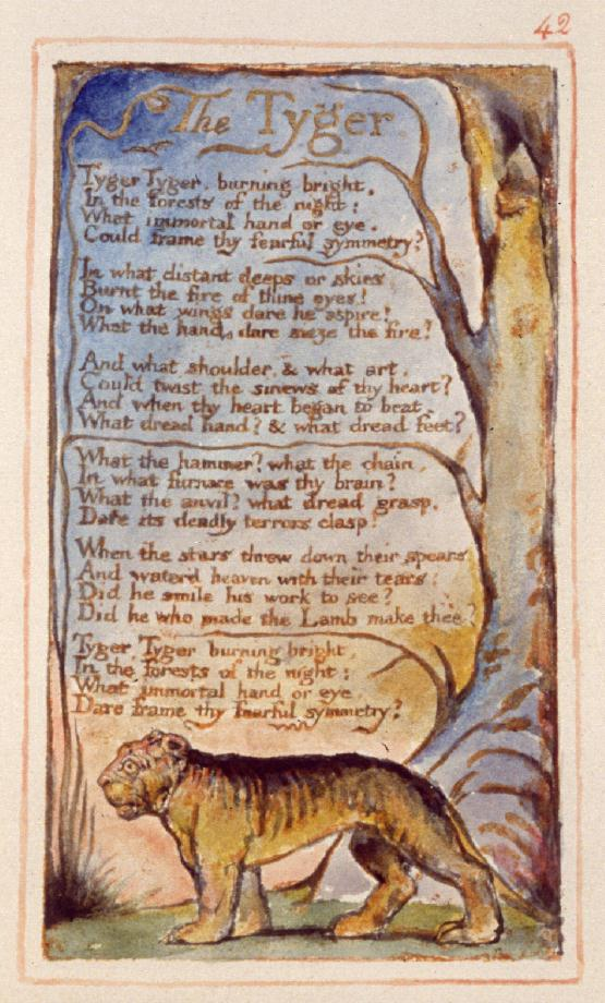 the similarities and the differences between the lamb and the tyger by william blake Comparison questions on blake's songs of innocence and experience posted on september 24, 2013 by @wonderfrancis the introductions to the songs of innocence and experience, the earth's.